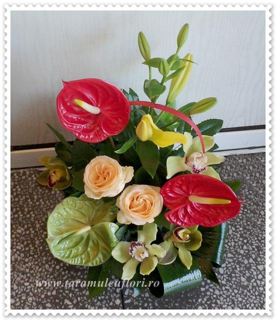 Cosuri cu flori. 0517